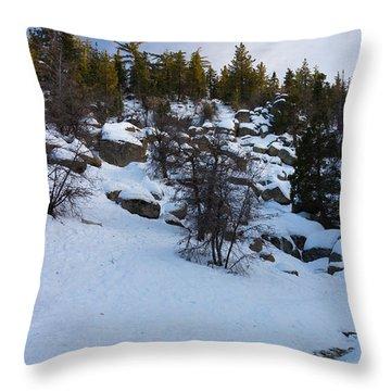 Winter White Throw Pillow by Heidi Smith