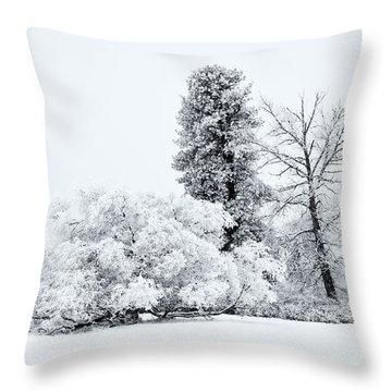 Winter White Throw Pillow by Mike  Dawson