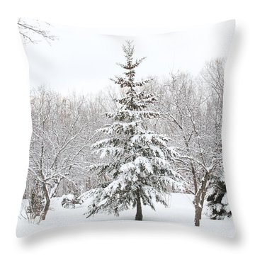 Winter White-out Throw Pillow