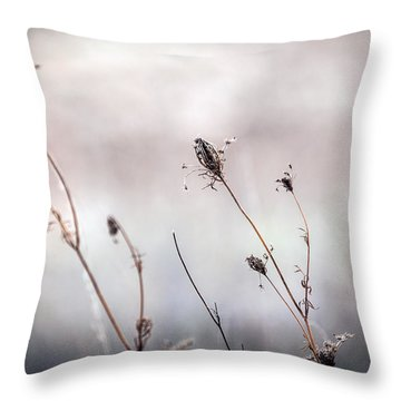 Throw Pillow featuring the photograph Winter Wild Flowers by Sennie Pierson