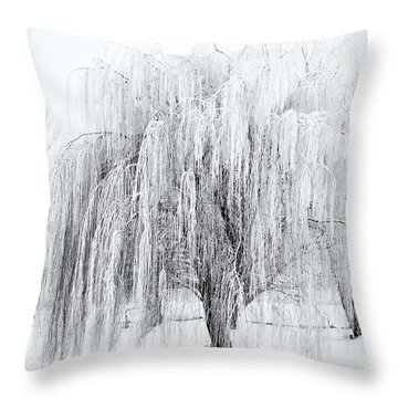 Winter Willow Throw Pillow by Mike  Dawson