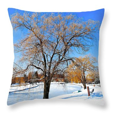 Winter Willow Throw Pillow by Frozen in Time Fine Art Photography