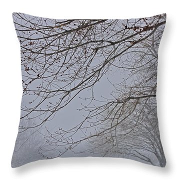 Winter With  A Promise Of Spring Throw Pillow