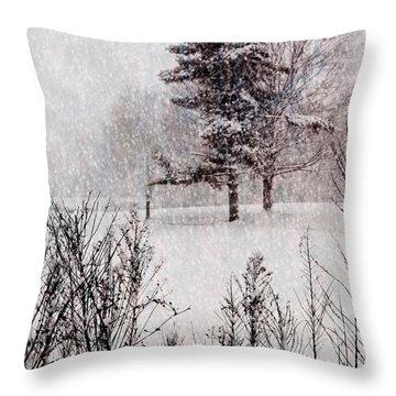 Winter Wonder 2 Throw Pillow