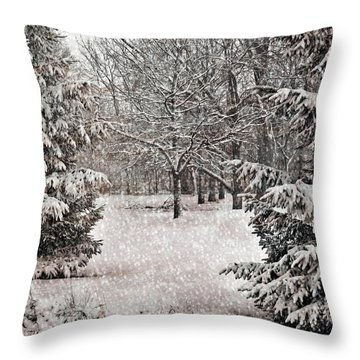 Winter Wonder 7  Throw Pillow