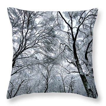Winter Wonder Throw Pillow by Jeff Klingler