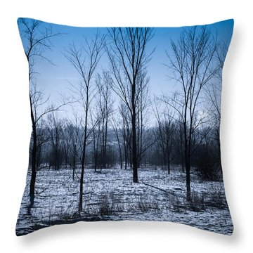Throw Pillow featuring the photograph Winter Wonderland by Bianca Nadeau