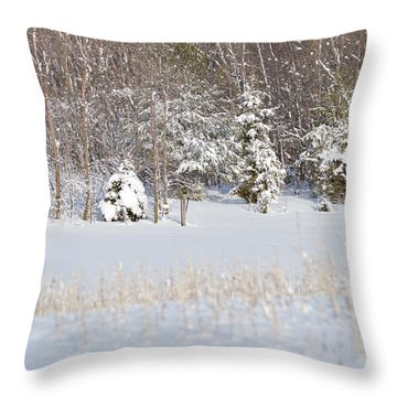 Throw Pillow featuring the photograph Winter Wonderland by Dacia Doroff