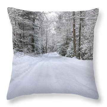 Winter Wonderland Throw Pillow by Donna Doherty
