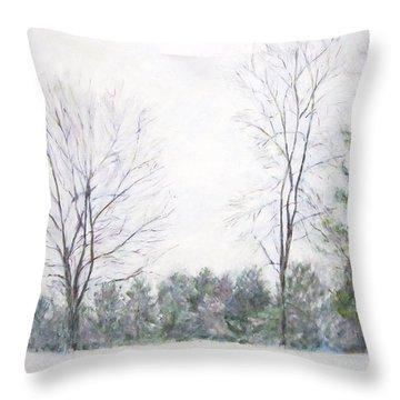 Winter Wonderland Usa Throw Pillow