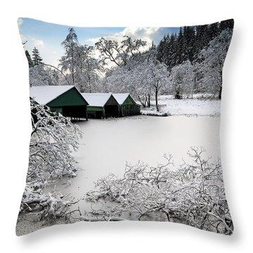 Winter Wonderland Throw Pillow by Grant Glendinning