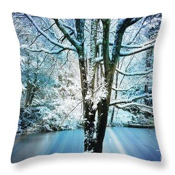 Throw Pillow featuring the photograph Winter Wonderland by Judy Palkimas