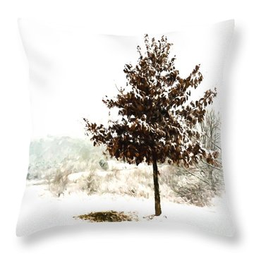 Winter Wonderland  Throw Pillow by Kerri Farley