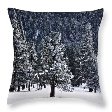 Winter Wonderland Throw Pillow by Melanie Lankford Photography