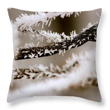 Winter Wonders Throw Pillow by Tiffany Erdman