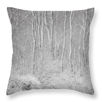 Throw Pillow featuring the photograph Winter Wood 2013 by Joan Davis