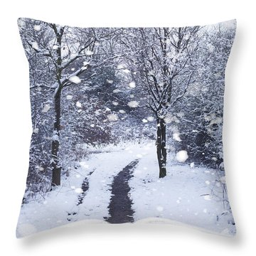 Winter Woodland Book Throw Pillow by Amanda Elwell