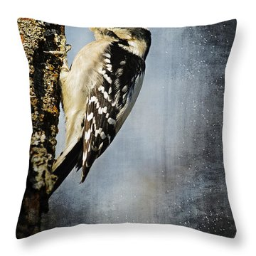 Winter Woodpecker Throw Pillow by Lena Wilhite