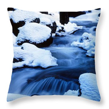 Winter Yosemite National Park Ca Throw Pillow by Panoramic Images