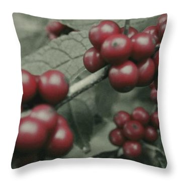 Throw Pillow featuring the photograph Winterberry Greetings by Photographic Arts And Design Studio
