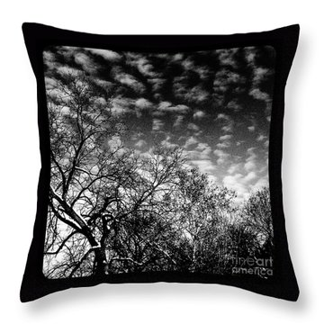 Winterfold - Monochrome Throw Pillow