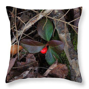 Wintergreen Throw Pillow