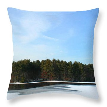 Wintergreen Winterfrost Throw Pillow by Stephen Melcher