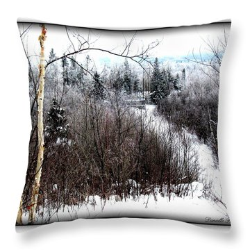 Winterlude Throw Pillow
