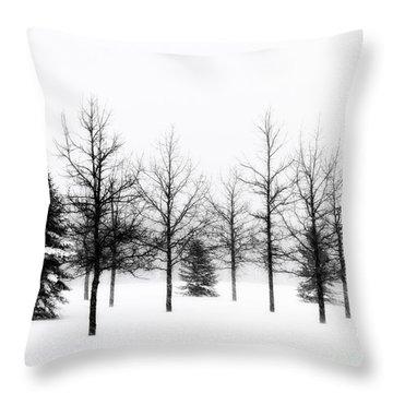 Winter's Bareness II Throw Pillow