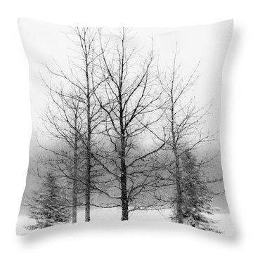 Winter's Bareness  Throw Pillow