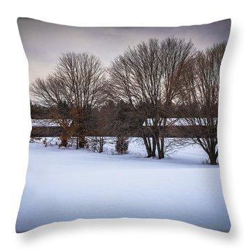Winters Calm Throw Pillow