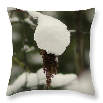 Winter's Cap Throw Pillow