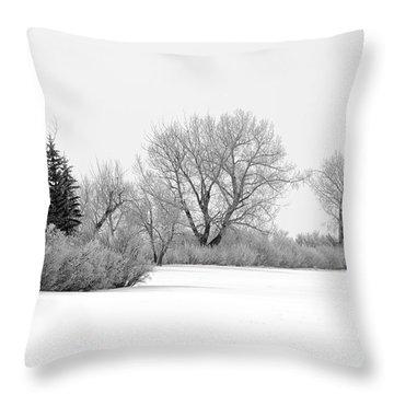 Winter's Cloak Throw Pillow