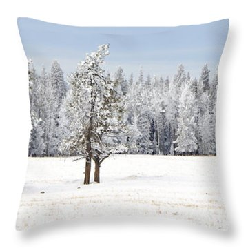 Winter's Coat Throw Pillow