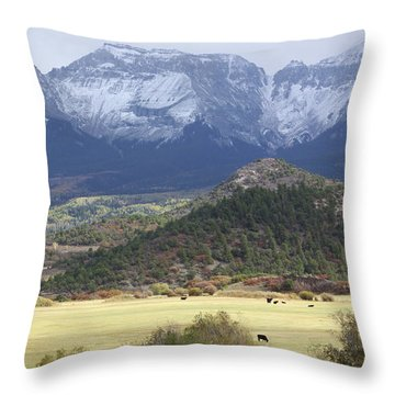 Winter's Coming Throw Pillow by Eric Glaser