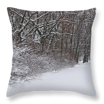 Winters Delight 2 Throw Pillow by Cedric Hampton