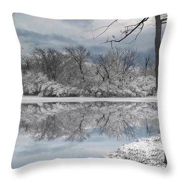 Winters Delight 6 Throw Pillow