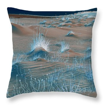 Winters Dunes IIi Throw Pillow by Suzanne Gaff