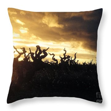 Winters Eve In The Vineyard Throw Pillow by France  Art