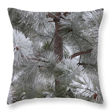 Winter's Gift Throw Pillow