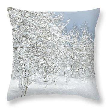 Winter's Glory - Grand Tetons Throw Pillow by Sandra Bronstein