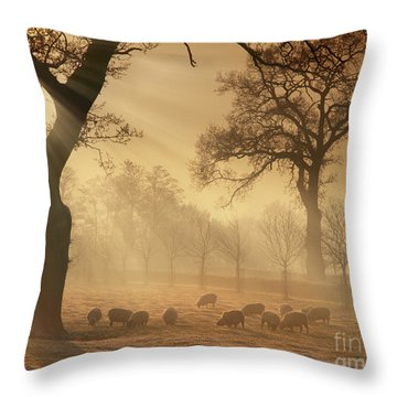 Winter's Gold Throw Pillow