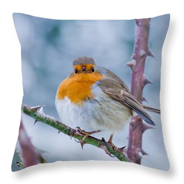 Winters Here Throw Pillow by Scott Carruthers