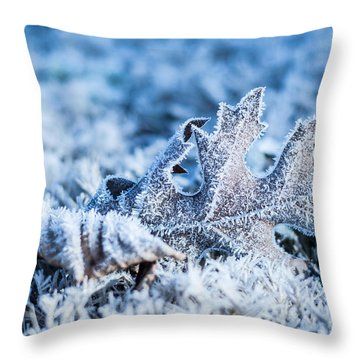 Winter's Icy Grip Throw Pillow