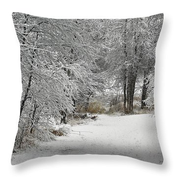 Throw Pillow featuring the photograph Winter's Kiss by Don Schwartz