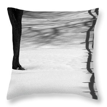 Winters Light Throw Pillow by Kenny Glotfelty