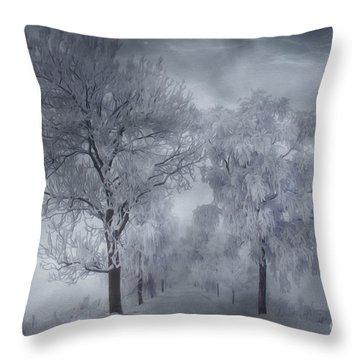 Winter's Magic Throw Pillow by Veikko Suikkanen