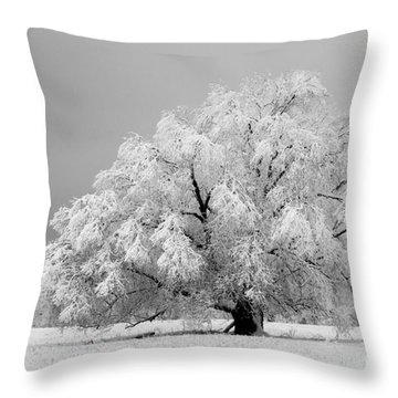 Winter's Majesty II Throw Pillow