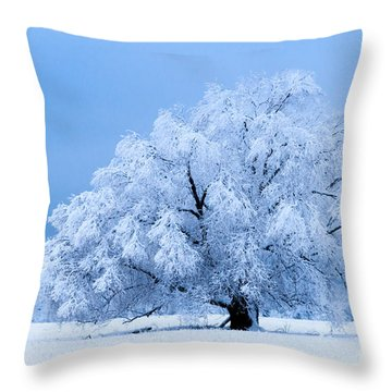 Winter's Majesty Throw Pillow