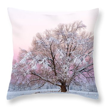 Winter's Majesty Morning Throw Pillow